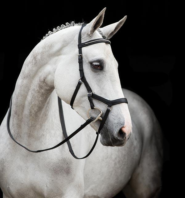 Horseware Rambo Micklem ORIGINALE Competition-senza redini